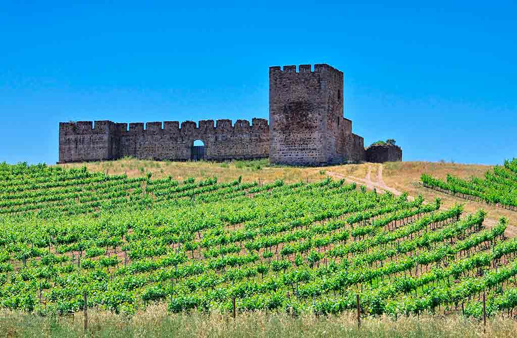 Famous Castles in Portugal-Castle-of-Valongo