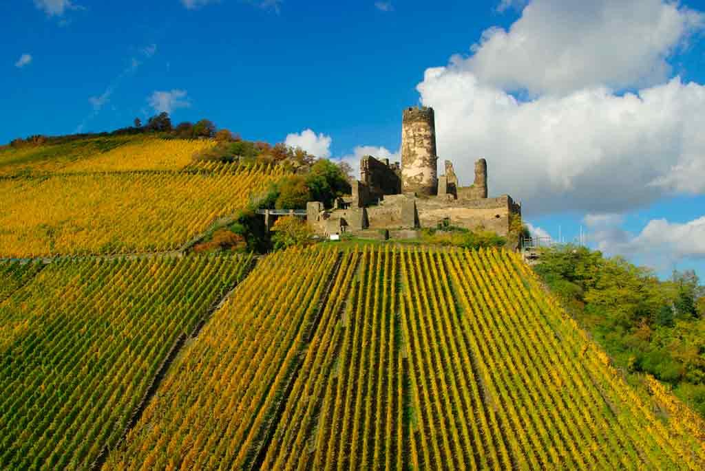 Castles in Rhine-Fürstenberg-Ruin