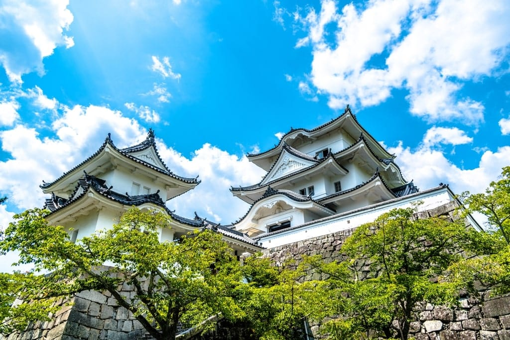 Ueno Castle - best castles in Japan