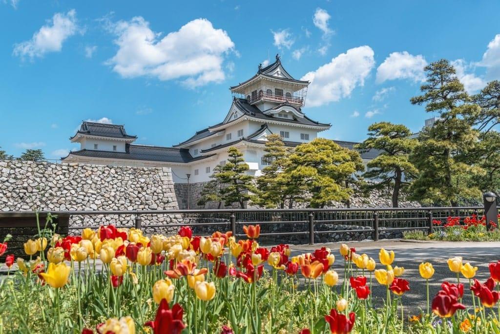 Toyama Castle  - best castles in Japan